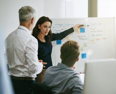 Es braucht Komplizen, um Projektmanagement-Standards zu etablieren.